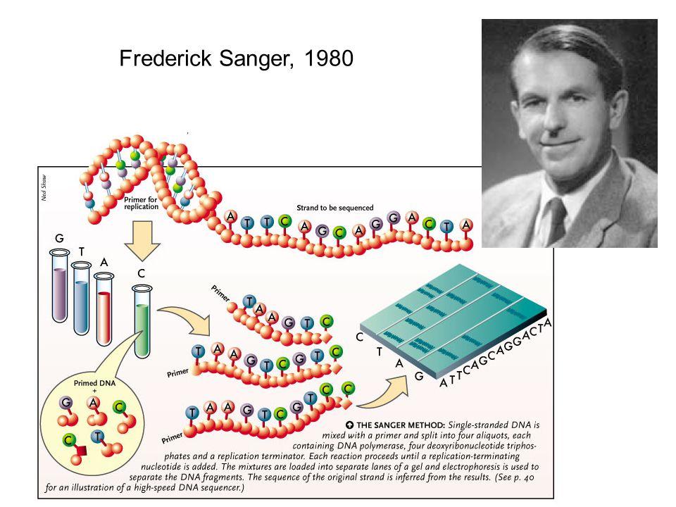 Frederick Sanger, 1980