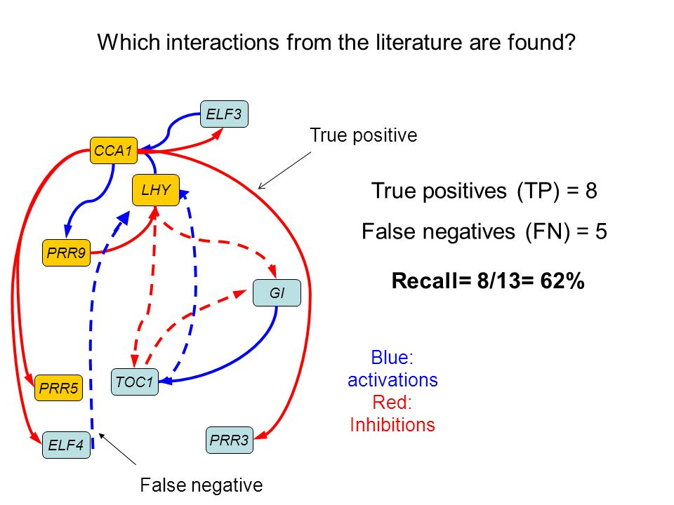 CCA1 LHY PRR9 GI ELF3 TOC1 ELF4 PRR5 PRR3 False negative Which interactions from the literature are found? True positive Blue: activations Red: Inhibi