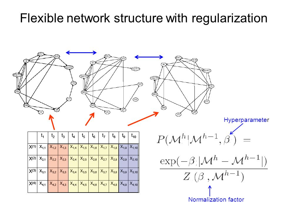 Flexible network structure with regularization Hyperparameter Normalization factor