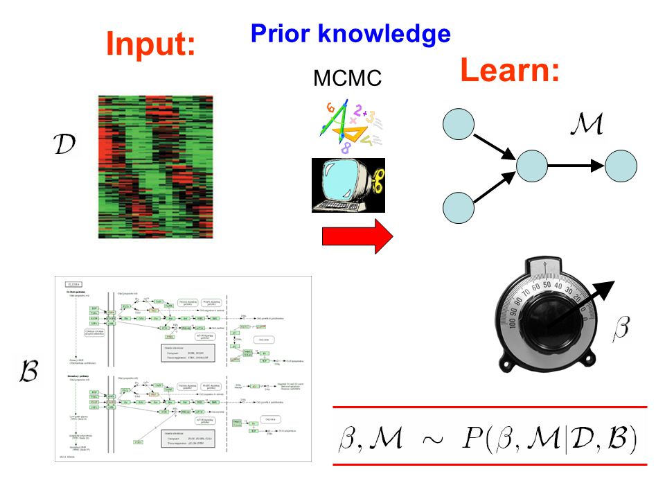 Input: Learn: MCMC Prior knowledge