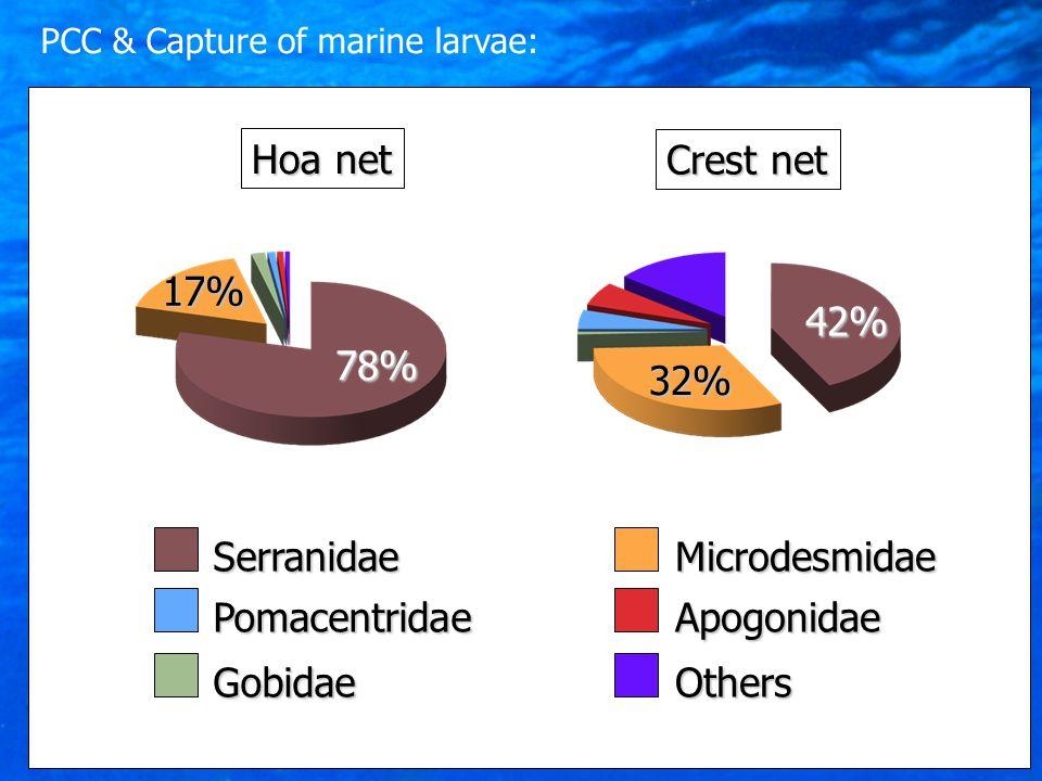 Crest net 42% 32% Serranidae Pomacentridae Microdesmidae Apogonidae GobidaeOthers Hoa net 78% 17% PCC & Capture of marine larvae: