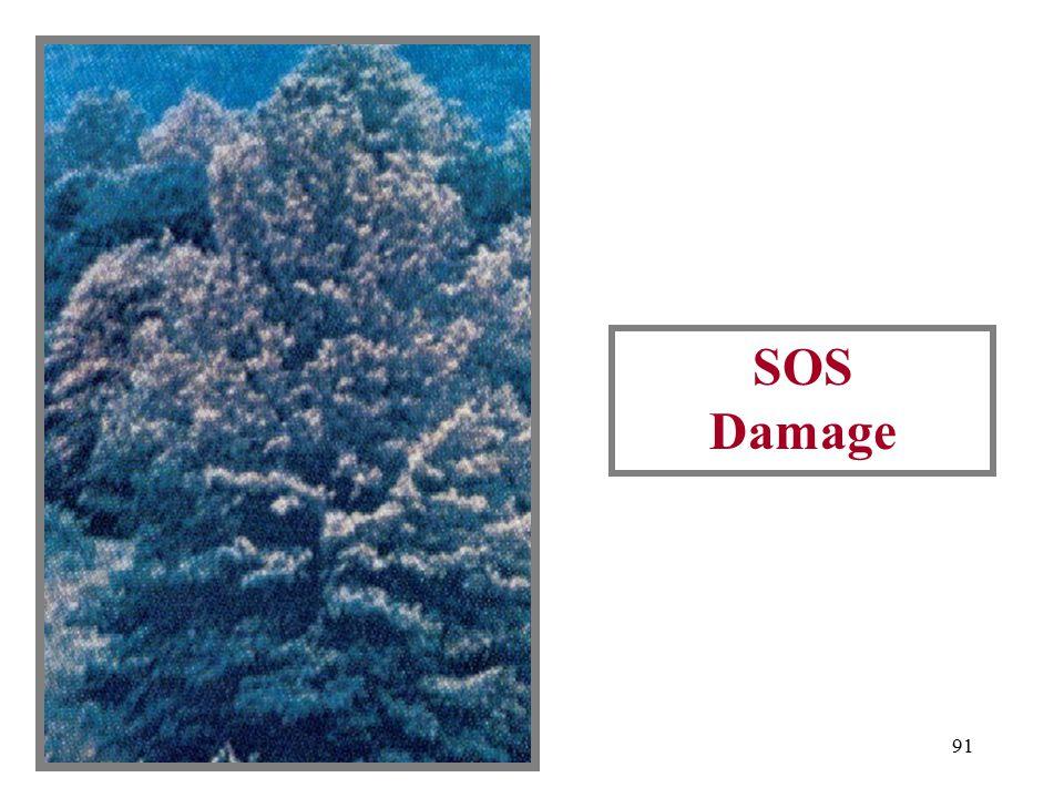90 SOS Larvae And Injury