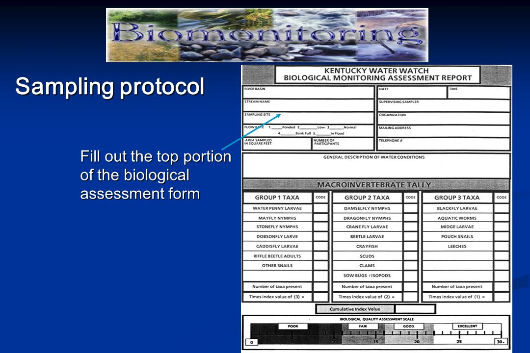 Sampling protocol Fill out the top portion of the biological assessment form