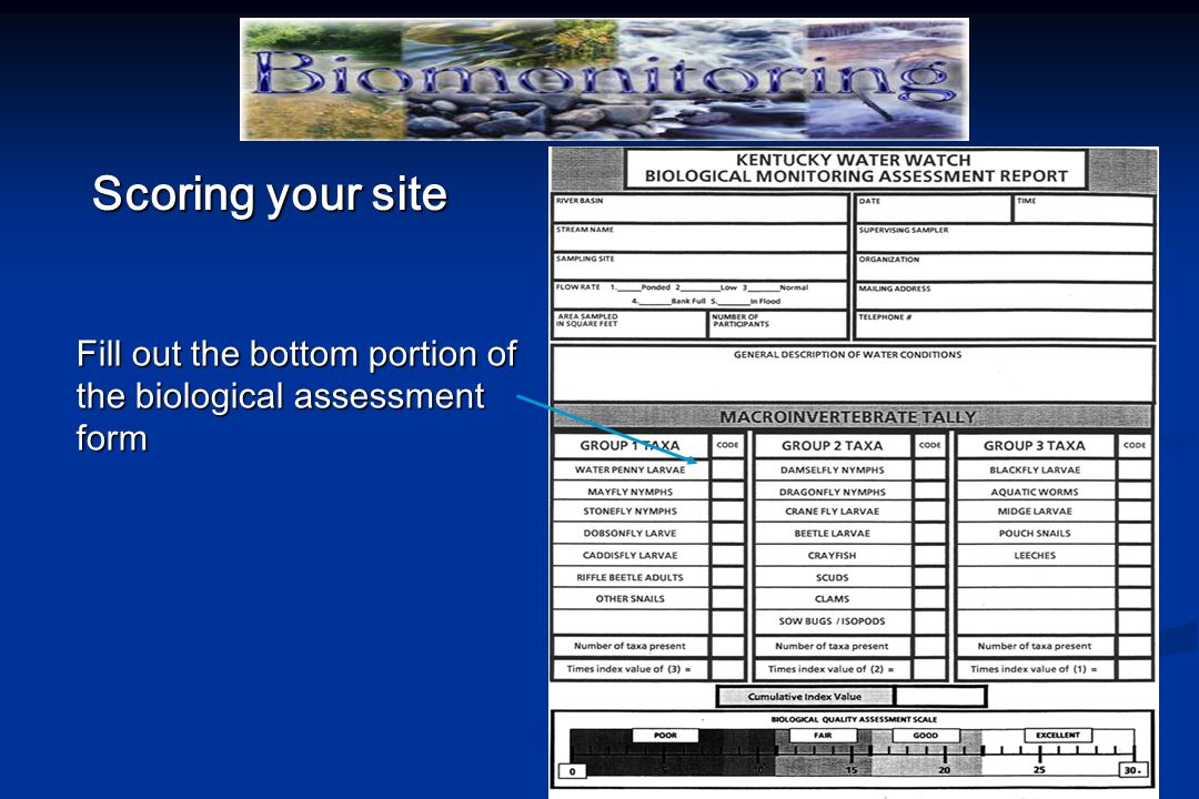 Scoring your site Fill out the bottom portion of the biological assessment form