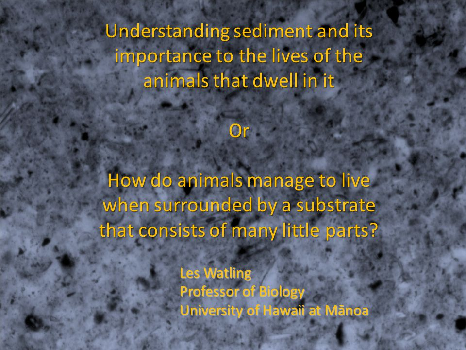 Understanding sediment and its importance to the lives of the animals that dwell in it Or How do animals manage to live when surrounded by a substrate that consists of many little parts.