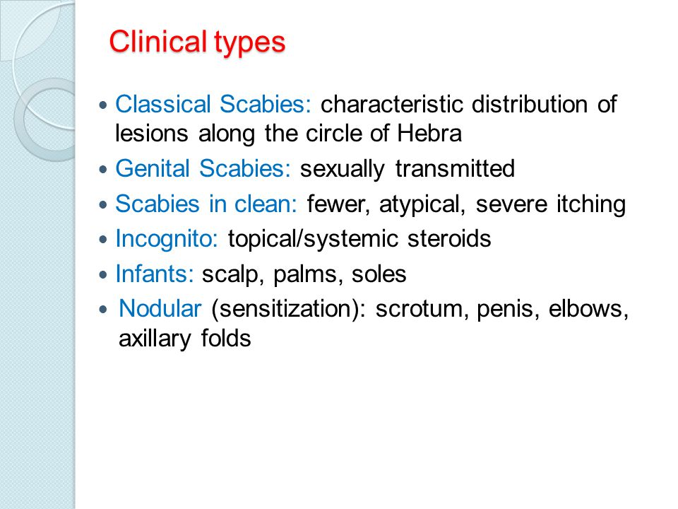 Clinical types Crusted (Norwegian scabies): mentally retarded, paralysis, immuno- compromised, leprosy; highly infectious, millions of mites Elderly Ping-pong scabies Animal scabies