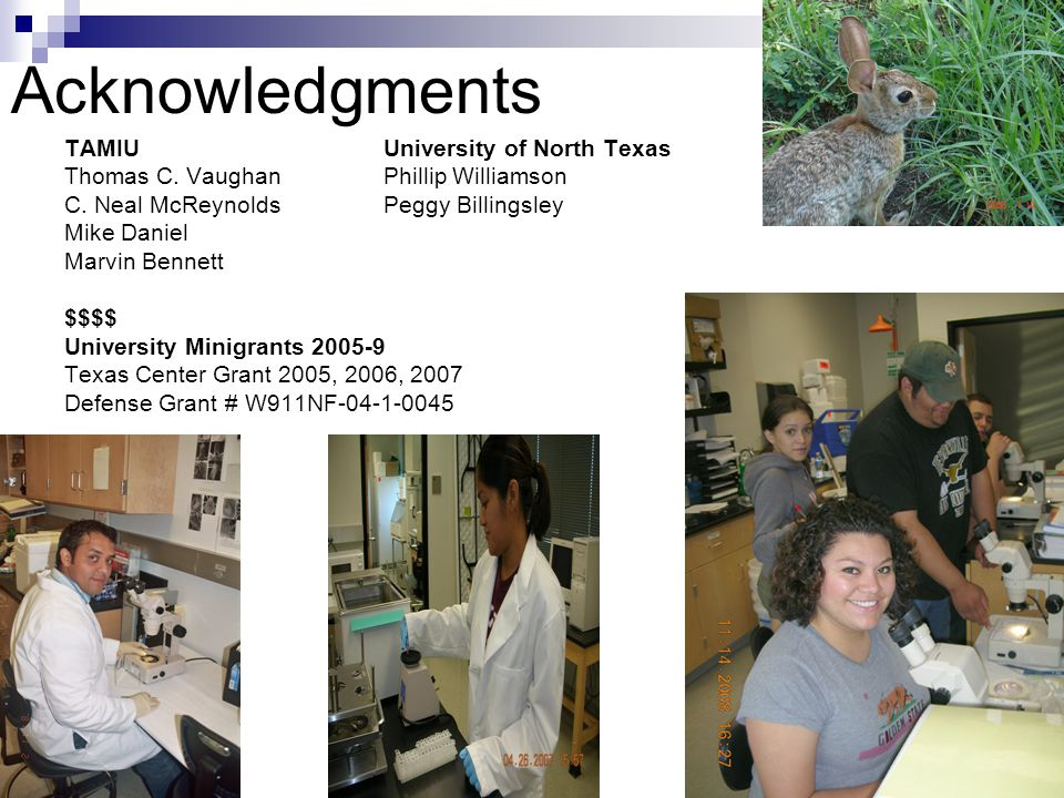 31 Acknowledgments TAMIUUniversity of North Texas Thomas C. VaughanPhillip Williamson C. Neal McReynoldsPeggy Billingsley Mike Daniel Marvin Bennett $
