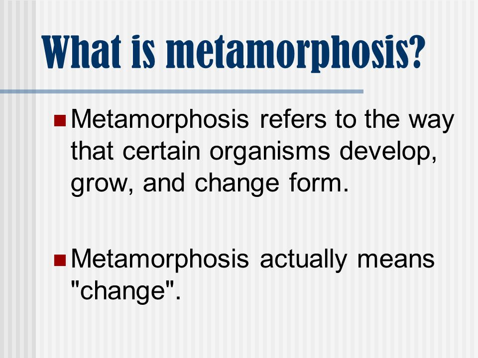 What is metamorphosis? Metamorphosis refers to the way that certain organisms develop, grow, and change form. Metamorphosis actually means