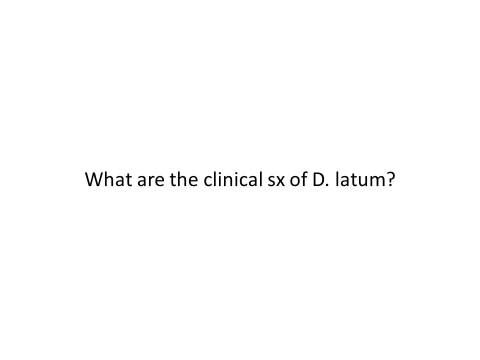 What are the clinical sx of D. latum