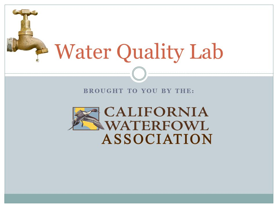 BROUGHT TO YOU BY THE: Water Quality Lab