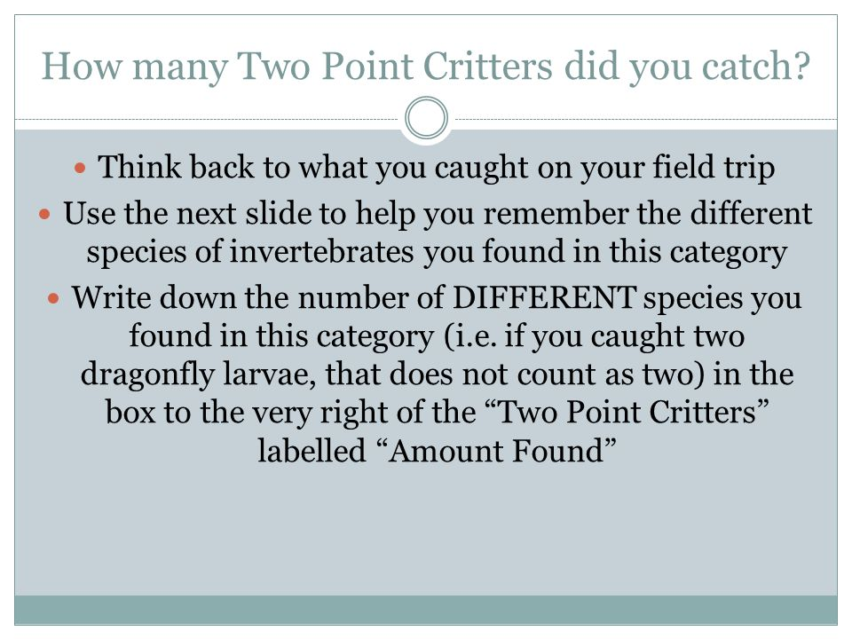How many Two Point Critters did you catch.