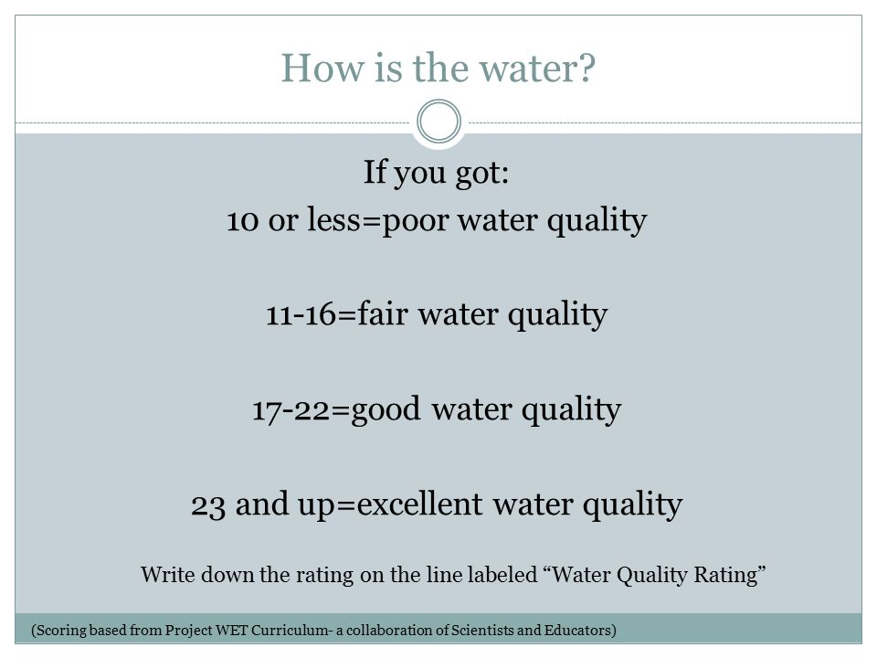 How is the water.