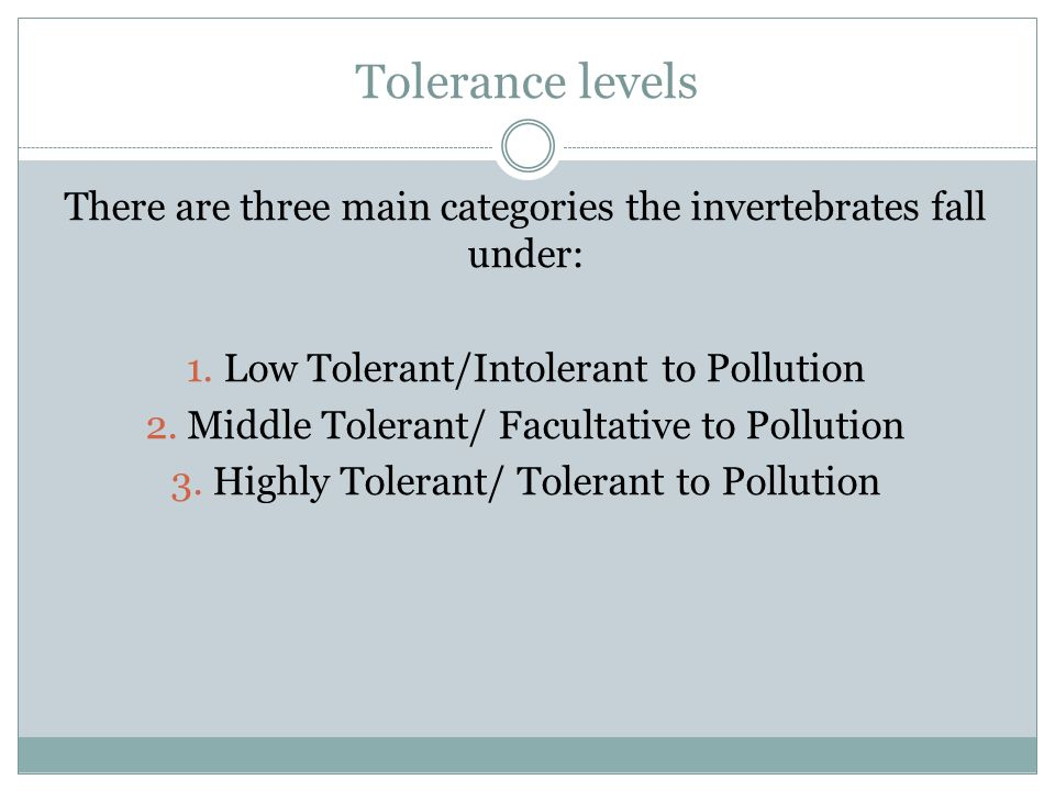 Tolerance levels There are three main categories the invertebrates fall under: 1.