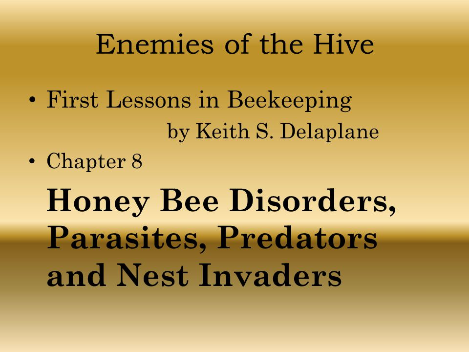 Enemies of the Hive First Lessons in Beekeeping by Keith S. Delaplane Chapter 8 Honey Bee Disorders, Parasites, Predators and Nest Invaders