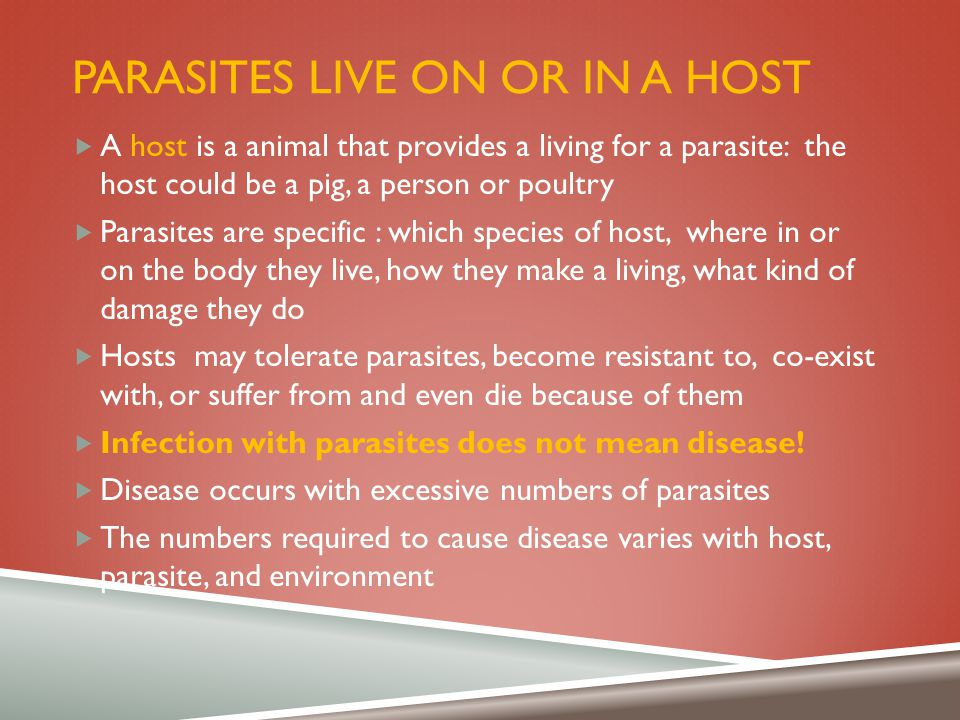 PARASITES LIVE ON OR IN A HOST  A host is a animal that provides a living for a parasite: the host could be a pig, a person or poultry  Parasites ar