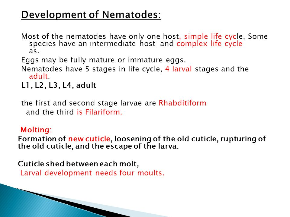Development of Nematodes: Most of the nematodes have only one host, simple life cycle, Some species have an intermediate host and complex life cycle a