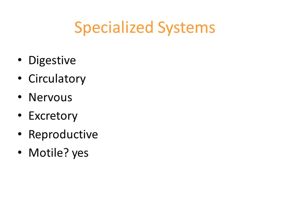 Specialized Systems Digestive Circulatory Nervous Excretory Reproductive Motile? yes