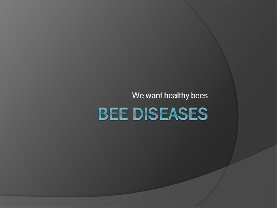 We want healthy bees