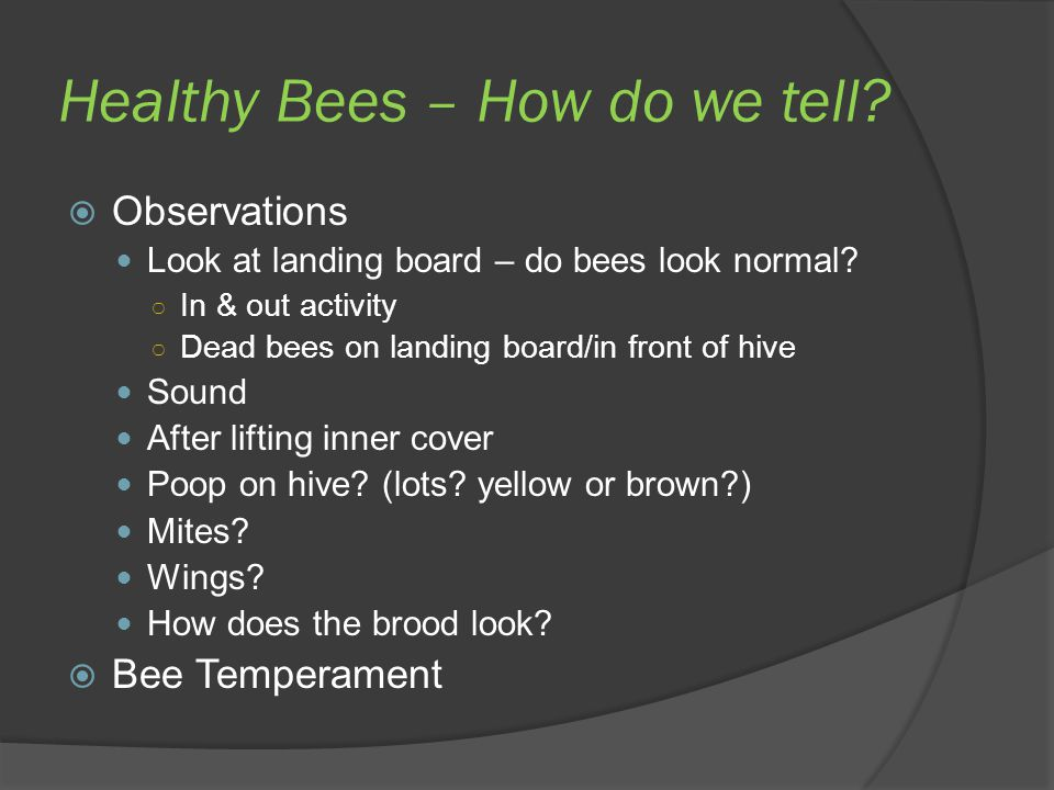 Healthy Bees – How do we tell?  Observations Look at landing board – do bees look normal? ○ In & out activity ○ Dead bees on landing board/in front o