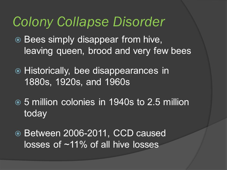 Colony Collapse Disorder  Bees simply disappear from hive, leaving queen, brood and very few bees  Historically, bee disappearances in 1880s, 1920s,