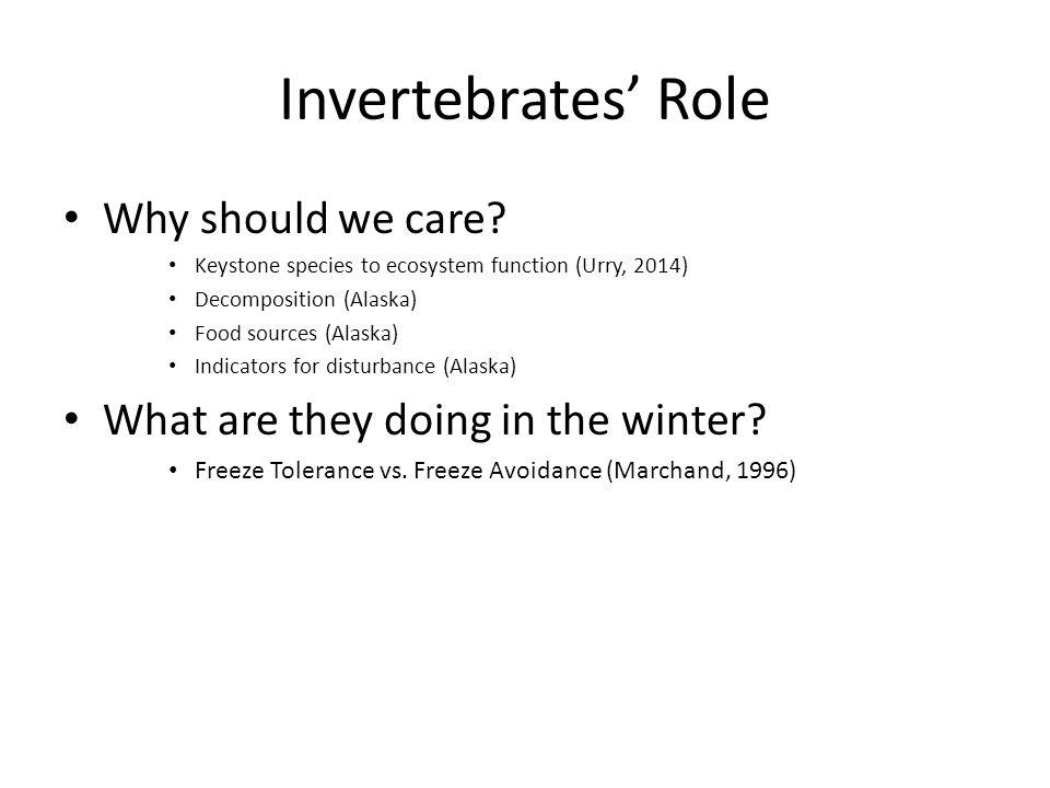 Invertebrates' Role Why should we care? Keystone species to ecosystem function (Urry, 2014) Decomposition (Alaska) Food sources (Alaska) Indicators fo