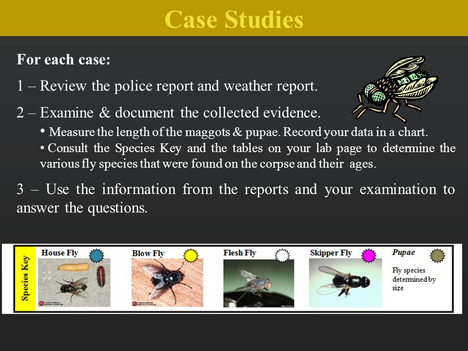 Case Studies For each case: 1 – Review the police report and weather report. 2 – Examine & document the collected evidence. Measure the length of the