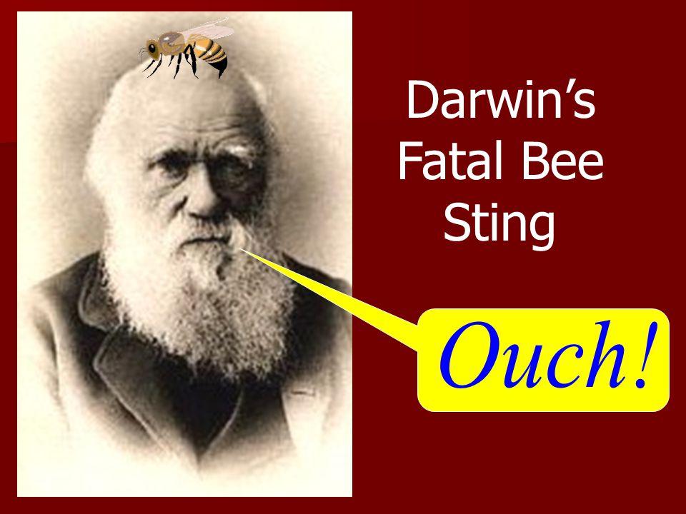 Darwin's Fatal Bee Sting