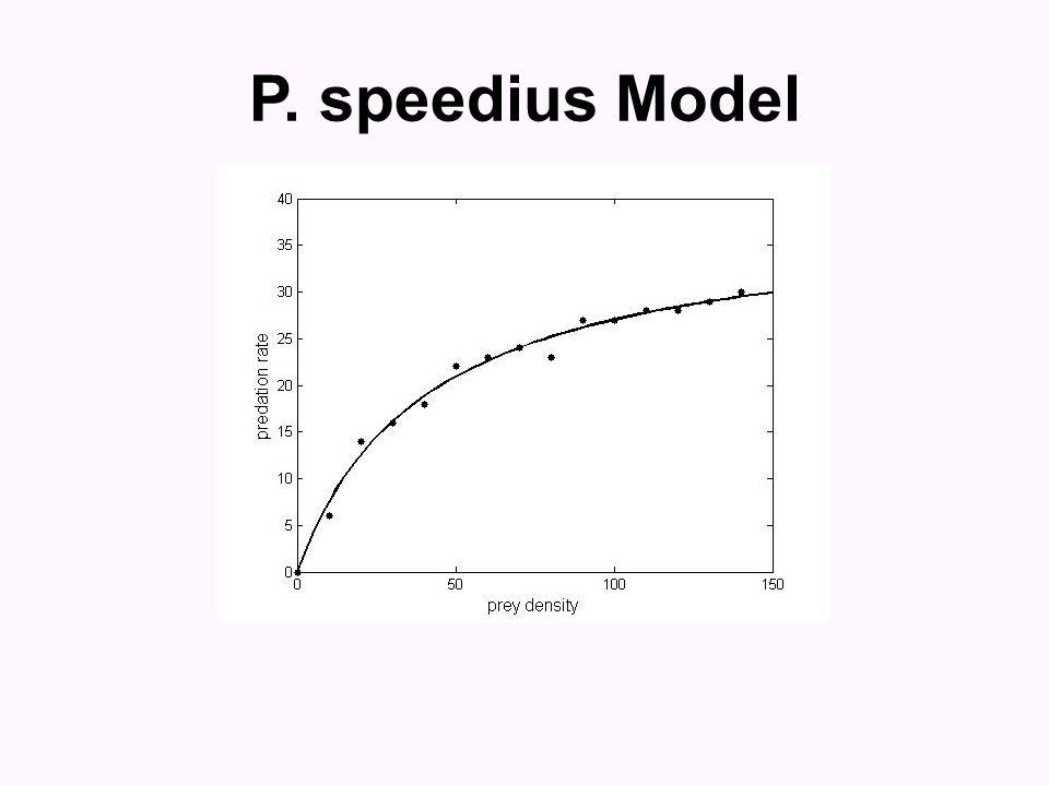 P. speedius Model