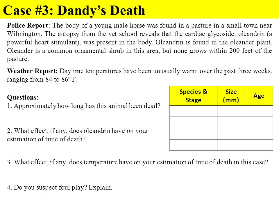 Case #3: Dandy's Death Police Report: The body of a young male horse was found in a pasture in a small town near Wilmington. The autopsy from the vet