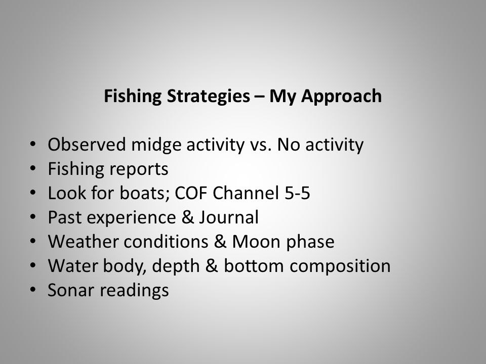 Fishing Strategies – My Approach Observed midge activity vs.