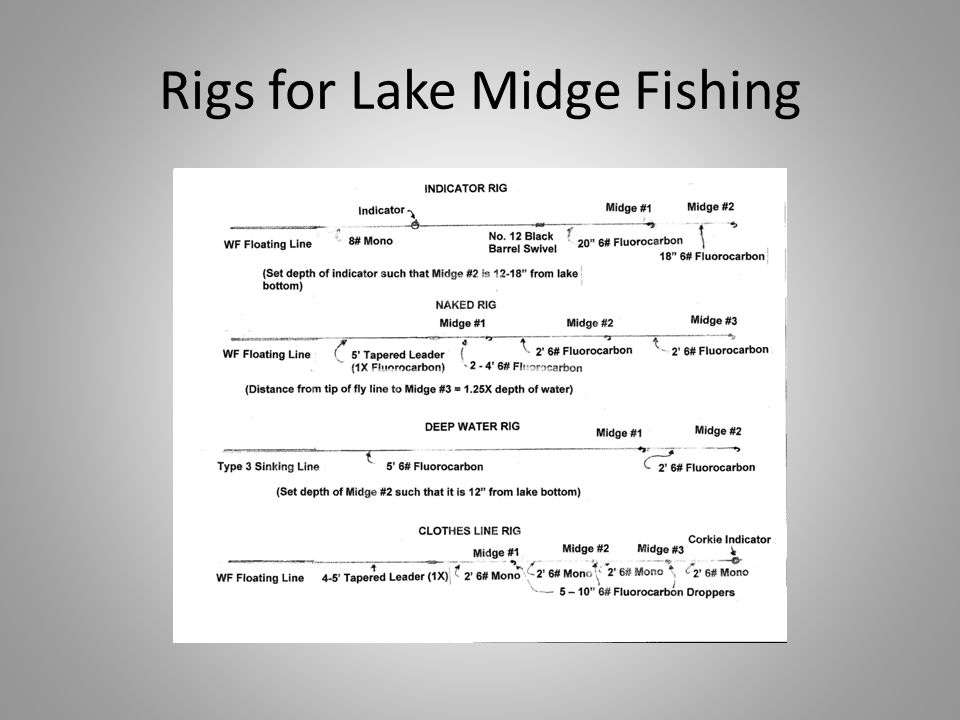 Rigs for Lake Midge Fishing