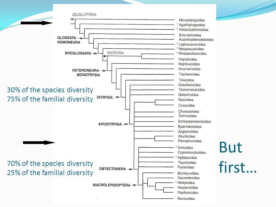 Incurvarioidea (Heteroneura - Monotrysia) 5 families with ca.