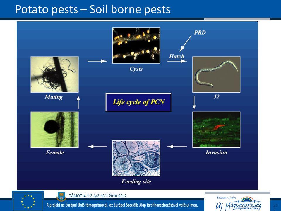 TÁMOP-4.1.2.A/2-10/1-2010-0012 Potato pests – Soil borne pests252