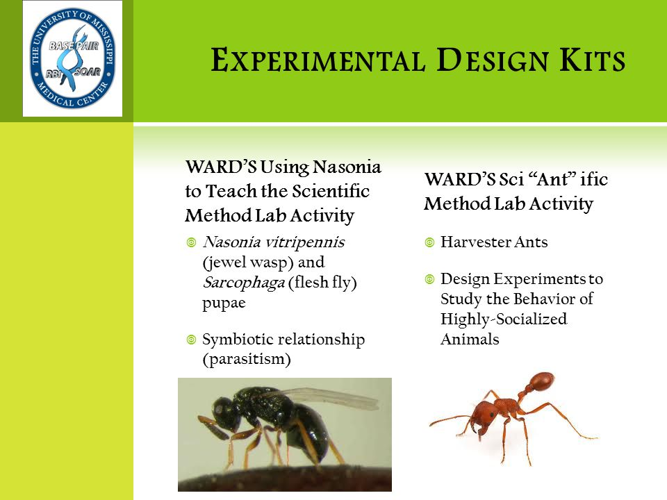 E XPERIMENTAL D ESIGN K ITS WARD'S Using Nasonia to Teach the Scientific Method Lab Activity  Nasonia vitripennis (jewel wasp) and Sarcophaga (flesh fly) pupae  Symbiotic relationship (parasitism) WARD'S Sci Ant ific Method Lab Activity  Harvester Ants  Design Experiments to Study the Behavior of Highly-Socialized Animals