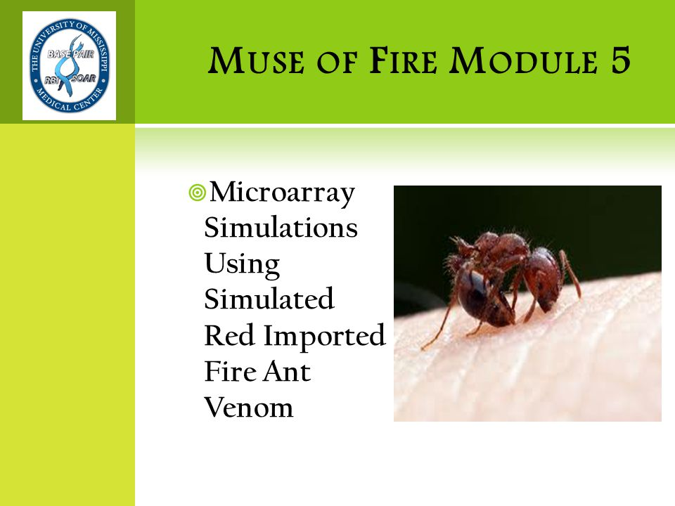 M USE OF F IRE M ODULE 5  Microarray Simulations Using Simulated Red Imported Fire Ant Venom