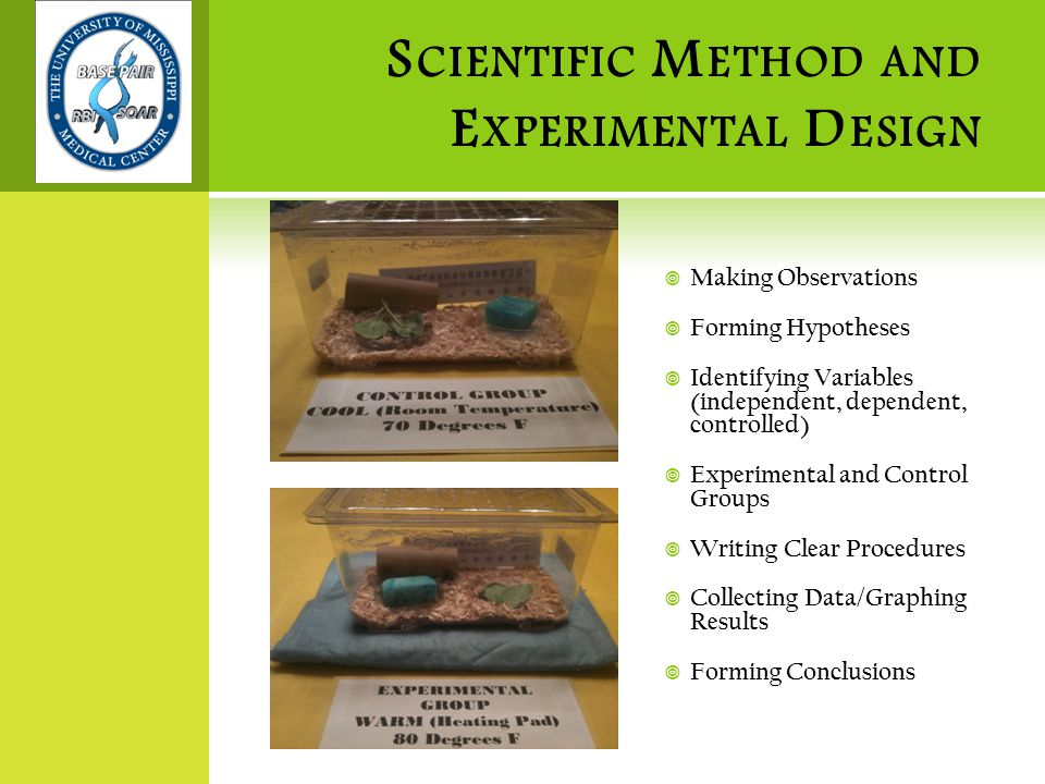 S CIENTIFIC M ETHOD AND E XPERIMENTAL D ESIGN  Making Observations  Forming Hypotheses  Identifying Variables (independent, dependent, controlled)  Experimental and Control Groups  Writing Clear Procedures  Collecting Data/Graphing Results  Forming Conclusions