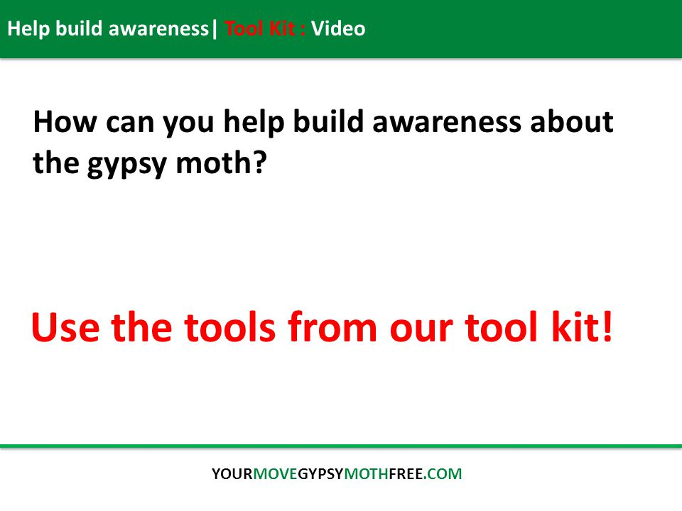 Help build awareness| Tool Kit : Video YOURMOVEGYPSYMOTHFREE.COM How can you help build awareness about the gypsy moth.