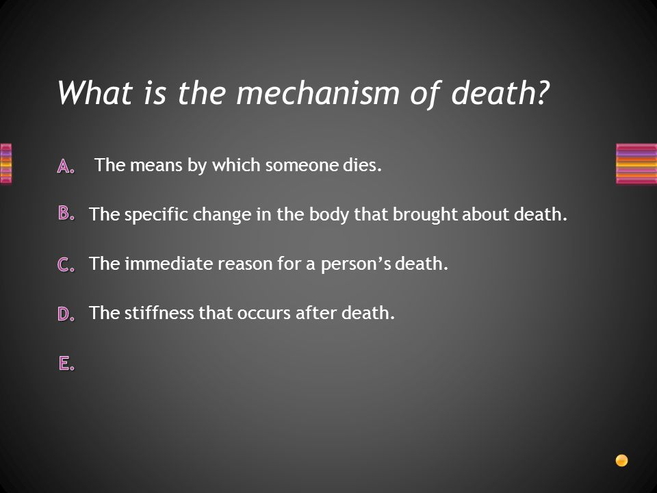 What are the 6 factors used to estimate a person's time of death?