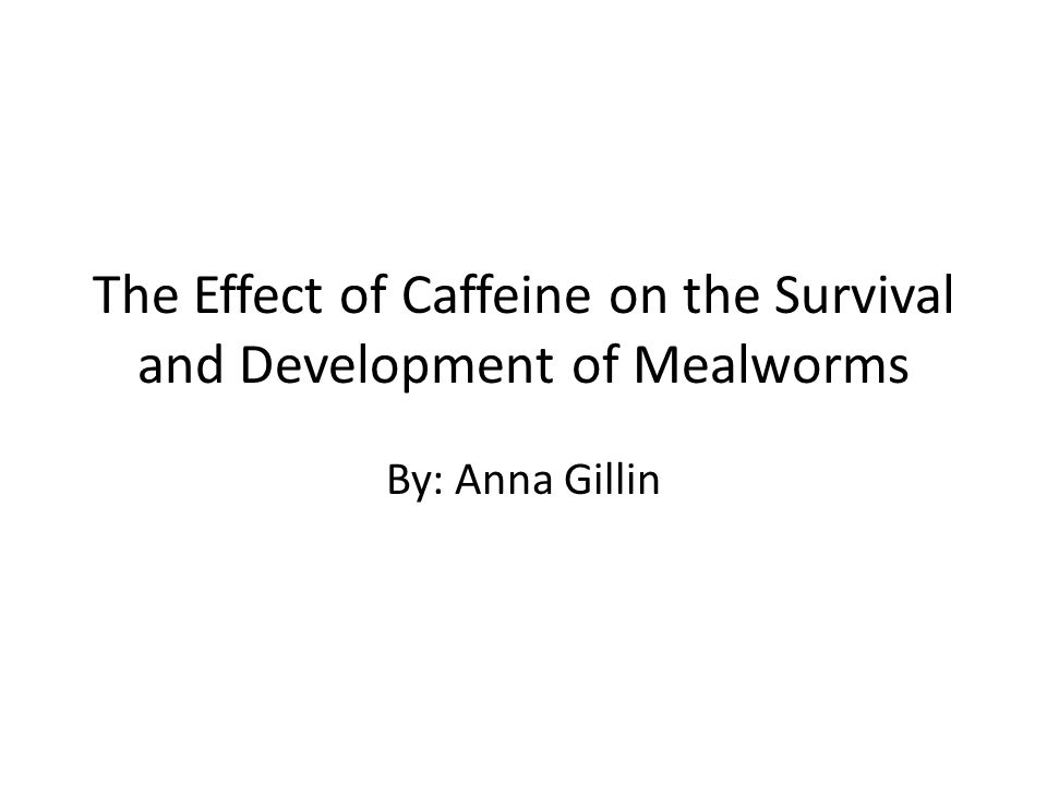 The Effect of Caffeine on the Survival and Development of Mealworms By: Anna Gillin