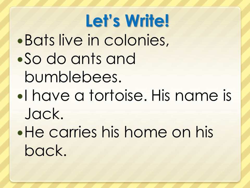 Let's Write! Bats live in colonies, So do ants and bumblebees. I have a tortoise. His name is Jack. He carries his home on his back.