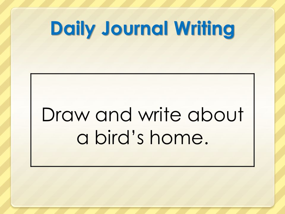 Daily Journal Writing Draw and write about a bird's home.