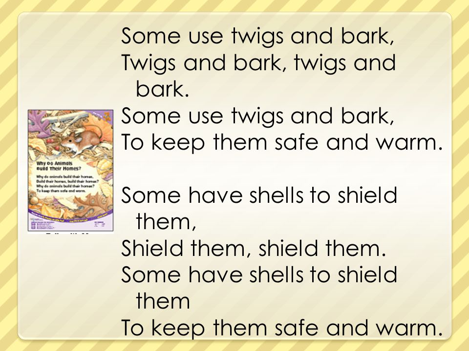 Some use twigs and bark, Twigs and bark, twigs and bark. Some use twigs and bark, To keep them safe and warm. Some have shells to shield them, Shield