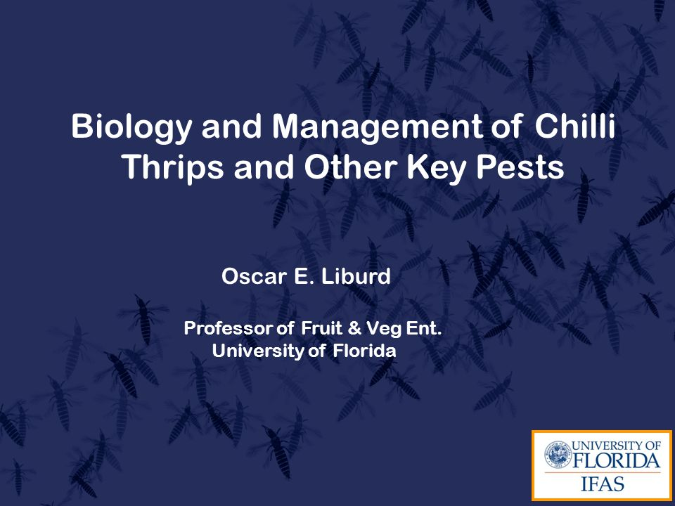 Biology and Management of Chilli Thrips and Other Key Pests Oscar E.