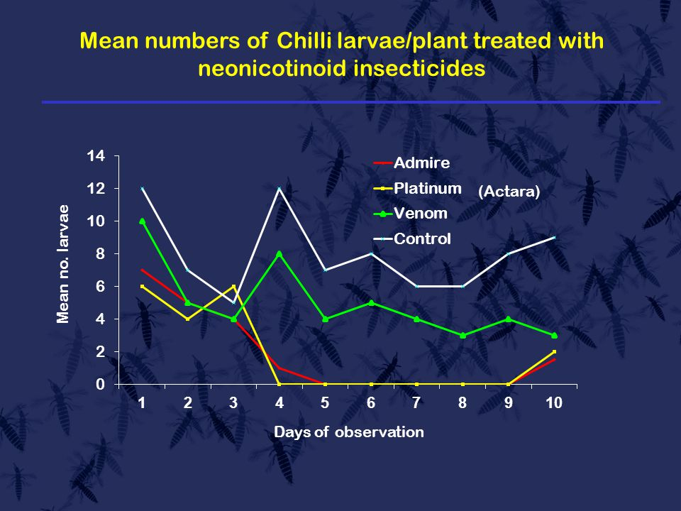 Mean numbers of Chilli larvae/plant treated with neonicotinoid insecticides (Actara)