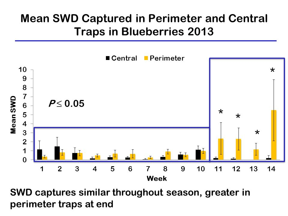 Mean SWD Captured in Perimeter and Central Traps in Blueberries 2013 SWD captures similar throughout season, greater in perimeter traps at end P ≤ 0.05