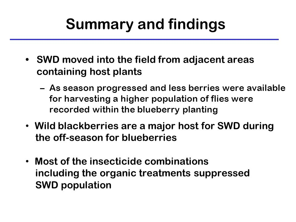 Summary and findings SWD moved into the field from adjacent areas containing host plants –As season progressed and less berries were available for harvesting a higher population of flies were recorded within the blueberry planting Wild blackberries are a major host for SWD during the off-season for blueberries Most of the insecticide combinations including the organic treatments suppressed SWD population