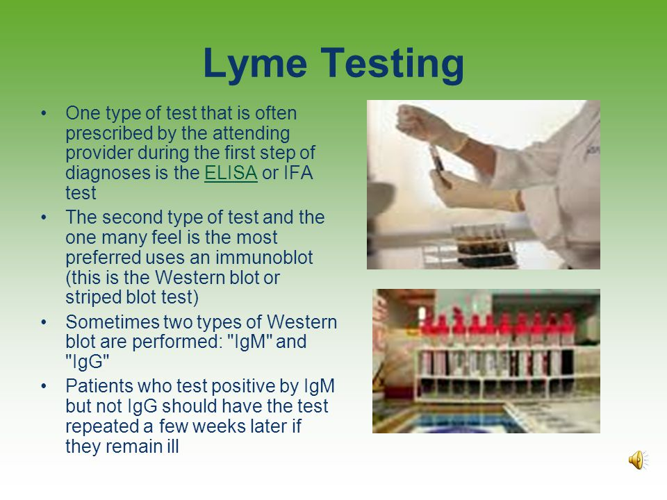 """Evaluation """"If false results are to be feared, it is the false negative result which holds the greatest peril for the patient."""" Gestational Lyme Borre"""