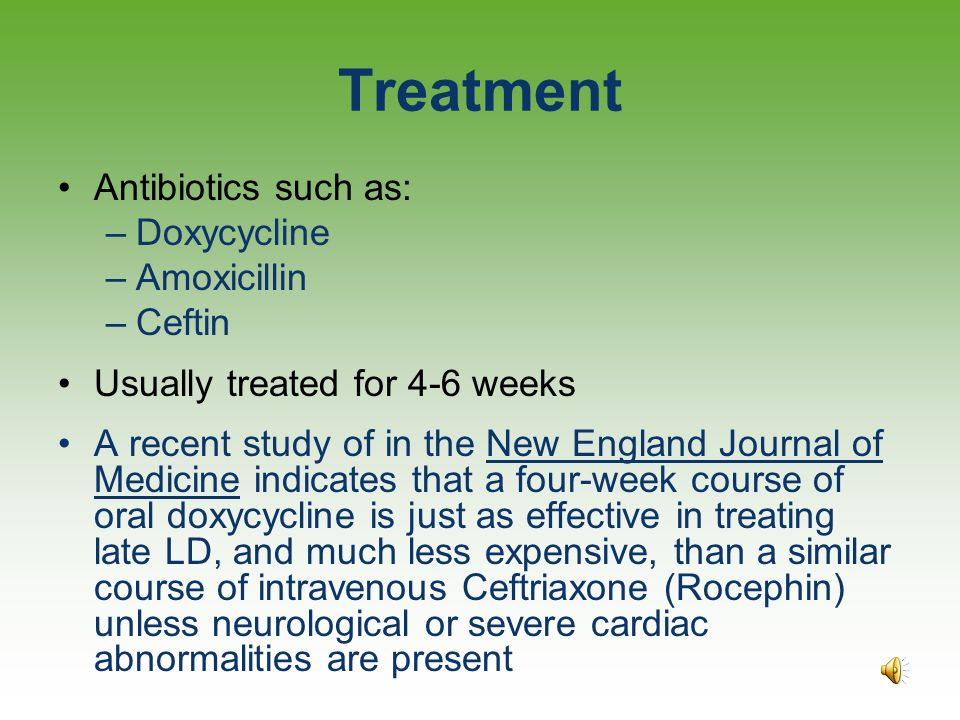 Treatment Two Standards of Care International Lyme and Associated Diseases Society (ILADS) –The ILADS Working Group. Evidence-based guidelines for the
