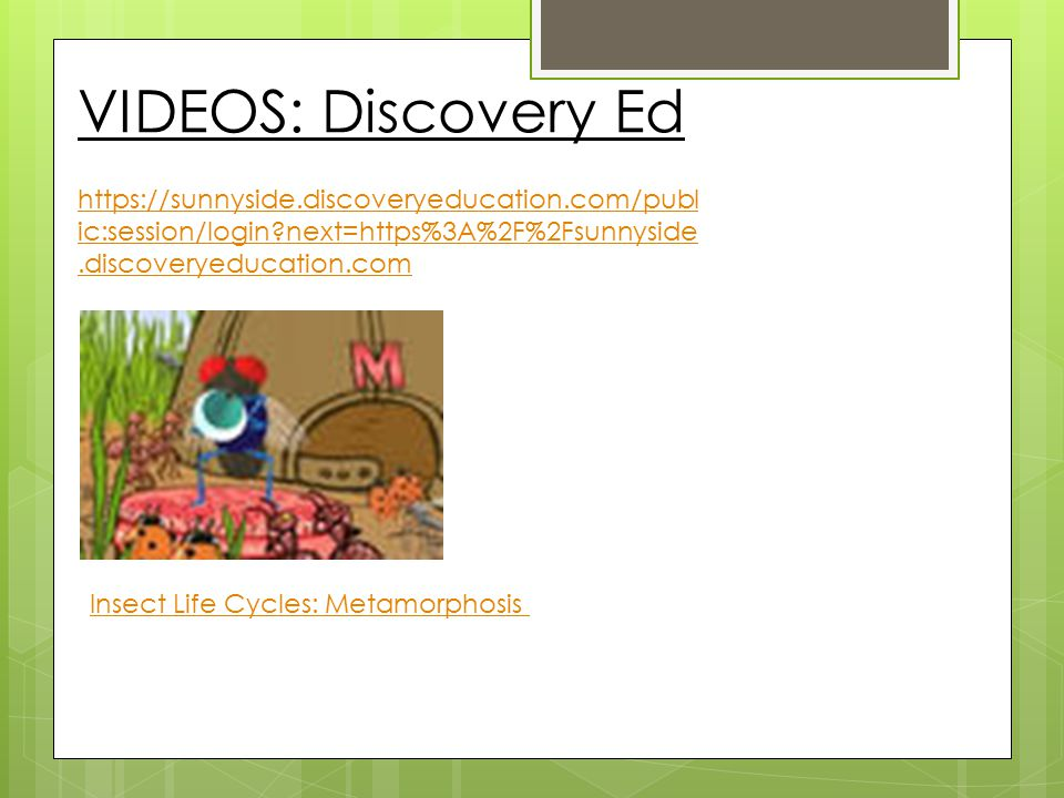 Cornell Notes Name:Date: Topic/Title: Insect ChangesChapter: 12 Main Idea:Key Details: Question(s): -an insect may go through incomplete or complete metamorphosis -incomplete metamorphosis includes: egg, nymph, adult -grasshoppers lay their eggs in soil Grasshoppers are insects.