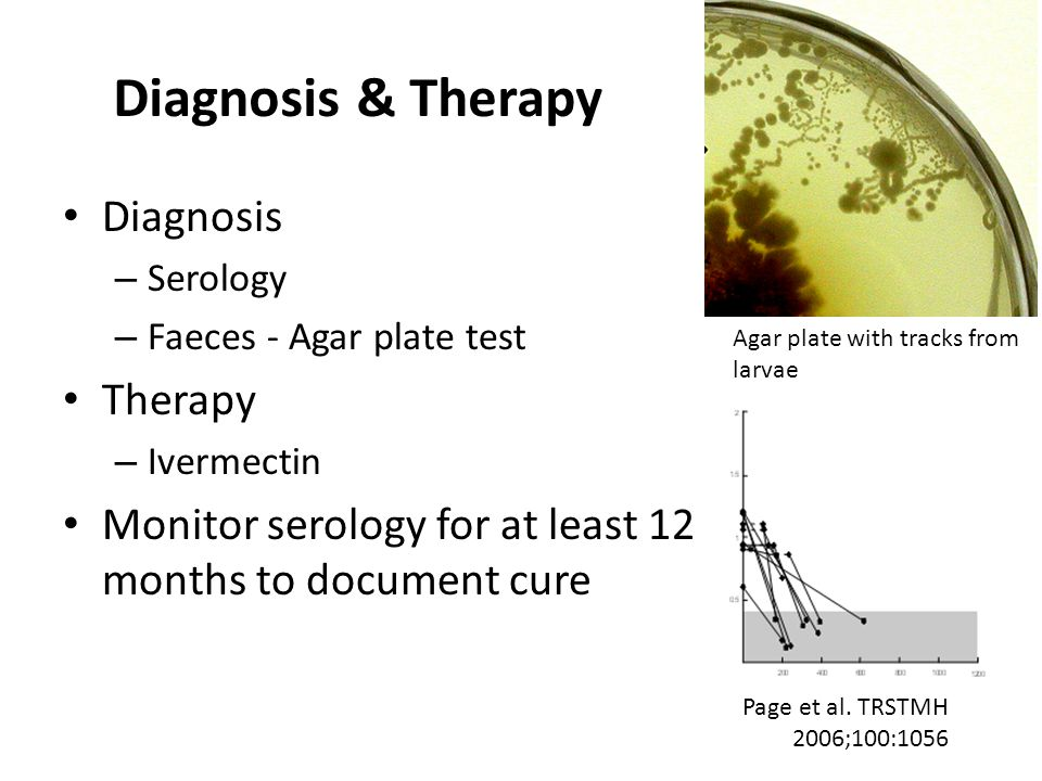Diagnosis & Therapy Diagnosis – Serology – Faeces - Agar plate test Therapy – Ivermectin Monitor serology for at least 12 months to document cure Page et al.